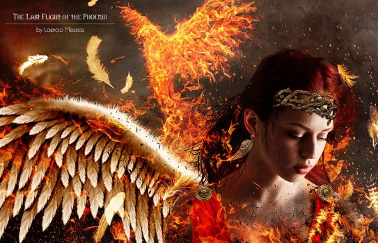 The Last Flight of the Phoenix by LaercioMessias