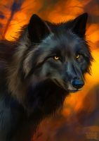 Round brush challenge wolf by Lhuin