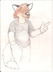 Riggs the fox. by Nayikee