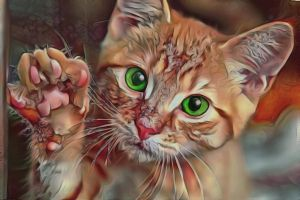 Give me five by eReSaW