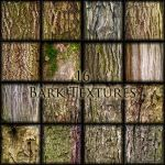Bark textures by 00AngelicDevil00
