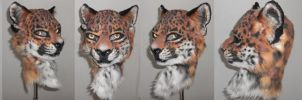 Jag with new ears by Sharpe19