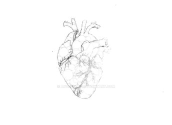 Heart by Anqueetas