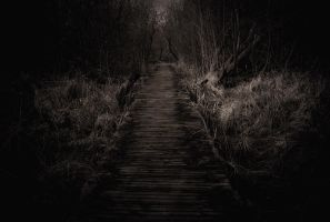 Road to ruin by blumilein