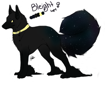 Bleight Reference by shattered-bones