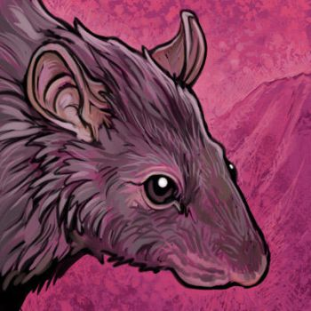 Rat Tile by ursulav