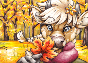 ACEO - Hahul by Cayleth