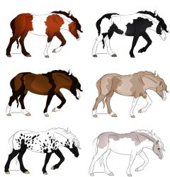 Horse Adopts by WildForests-Stables