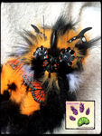 SOLD!!! TBL RECYCLED CLOTHING ButterflyKitten by TouchedbyLavender