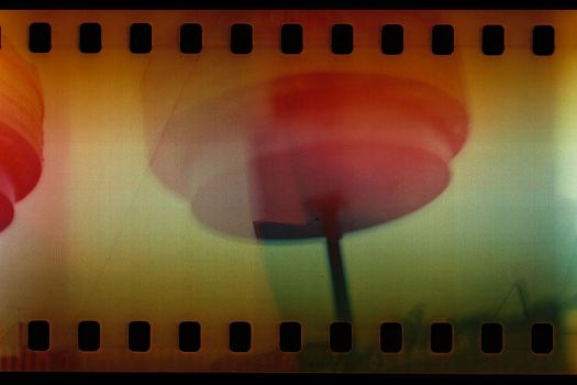 saucer by toy-camera