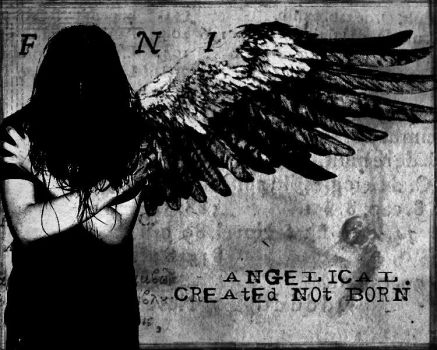 angelical - created not born by amorpheous