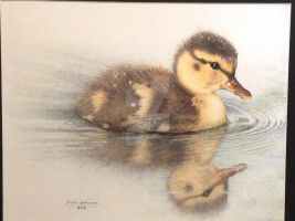 Duckling Reflection (color 2) by AgentRadiantDragon