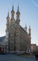 City Hall of Leuven by Blister17