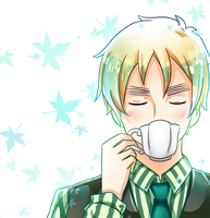 APH - English Tea by TheTwinGardeners