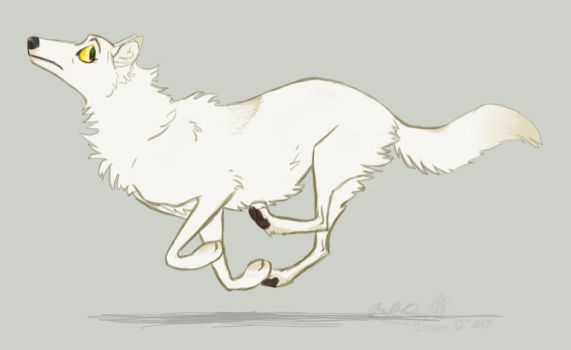 Wolf Gallop by Falcolf