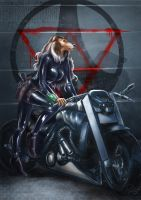 Moto, tribute to Tigres Volants by psychee-ange