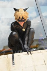 Chat Noir cosplay by Jequila