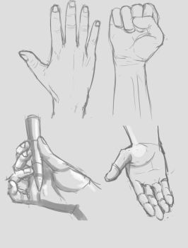 Hand studies by ruzkin
