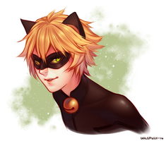 Chat Noir by whispwill