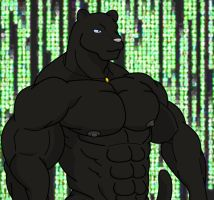 2010 Intro - Large Panther by WolfoxOkamichan
