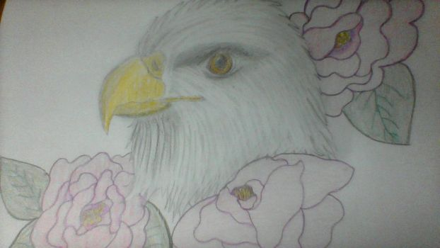 Eagle with Carnations by Pokergirl97