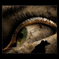 eyegore by insaneone