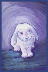 Purple and blue lop by nienor