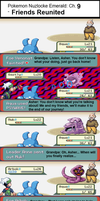 Pokemon Naturelocke Pt.9- Friends Reunited by BoomerangX7