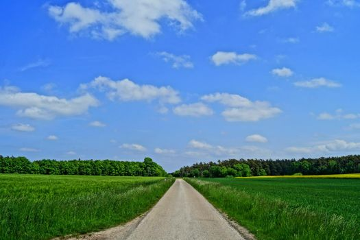road by Mittelfranke