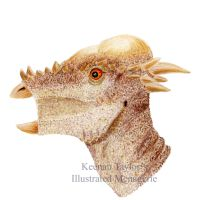 Subadult Pachycephalosaurus (Stygymolach) by IllustratedMenagerie