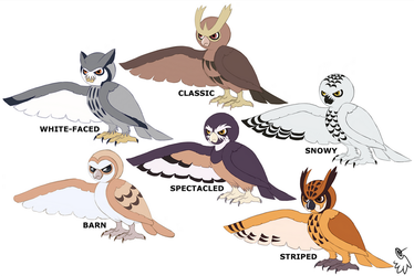 Noctowl Variations by LucidJello