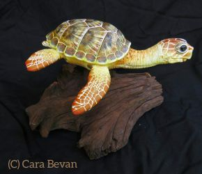 Lena the Loggerhead Sea Turtle by ART-fromthe-HEART