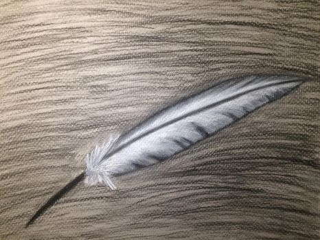 Feather  by Mystery0099