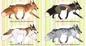 CLOSED   fox adopts by gold-adopts
