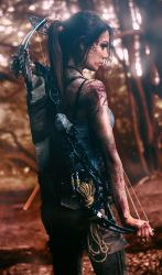 Rise of the Tomb Raider - A Long Journey by JadeSura