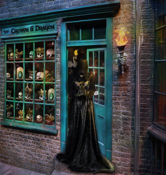 The Shoppe Keeper by cluttergirl