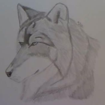Wolf by 8catpaws