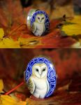 Commission:barn owl silver box by Heliocyan