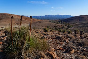 The Flinders Ranges #3 by destroyerofducks
