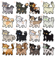 Warrior cats Adopts || Pay to Adopt  / Wta by Buff-Spud