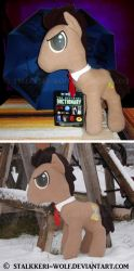 Doctor Whooves plushie by Stalkkeri-wolf