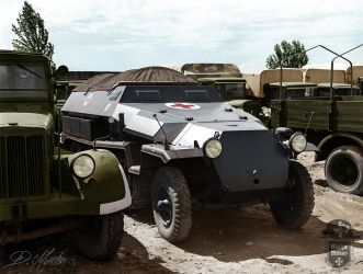 Hungarian Sd.Kfz. 251 by MartynMilitary