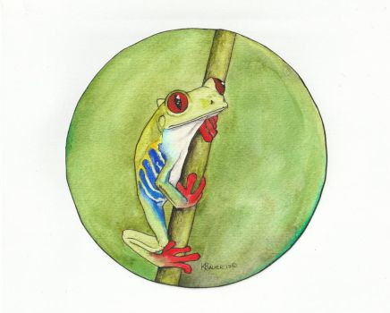 Red Eyed Tree Frog by kbauerart