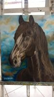 Realistic transition - Horse 2015 by GabiHorseArt98