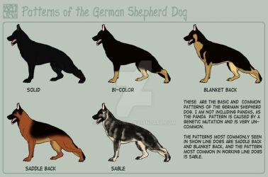 Shepherd - Patterns by MauserGirl