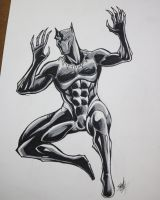 Black Panther by Steff-Magalhaes