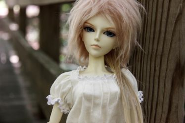 Willow at Red Wing Park by roseofporcelain