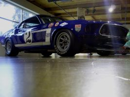 Million dollar Mustang Gurney by Partywave