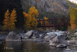 The Bridge in the Fall by TRunna