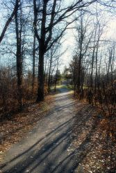 Fall Shadows by midnightstouchSTOCK